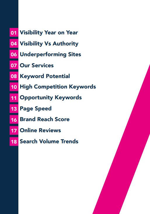 Lingerie Retailers sector report contents page