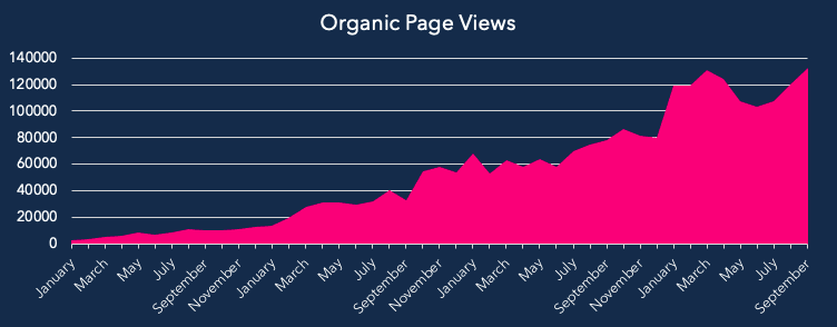 organic traffic graph for ecommerce blog